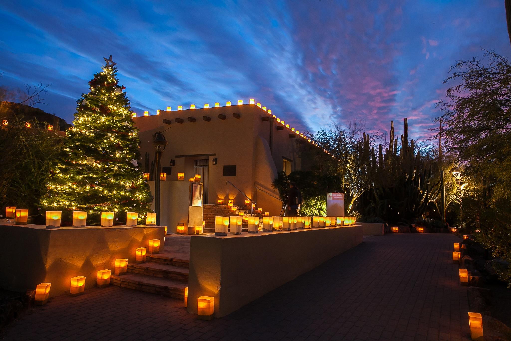 Desert Botanical Garden Holidays